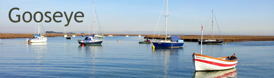 Gooseye-Header-Boats.jpg